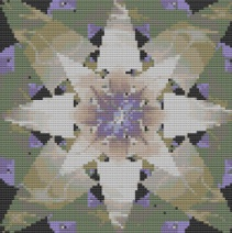 Macintosh HD:Users:Fiona:Documents:Bits and bobs:embroidery:Abstract flower.chart