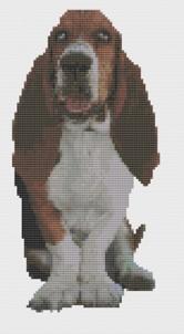 Macintosh HD:Users:Fiona:Documents:florashell:Basset Hound:Basset Hound.chart