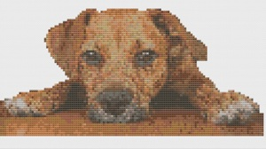 Macintosh HD:Users:Fiona:Documents:florashell:Dog Peeping Over Table:Dog Peeping Over Table.chart
