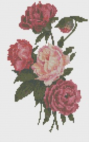 Macintosh HD:Users:Fiona:Documents:florashell:peony bouquet:Peony Bouquet.chart