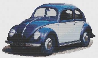 Macintosh HD:Users:Fiona:Documents:florashell:split window beetle:Split Window VW Beetle.chart