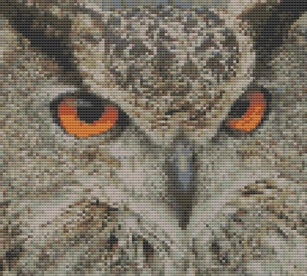 Macintosh HD:Users:Fiona:Documents:Bits and bobs:embroidery:eagle owl.chart