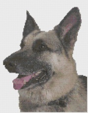 Macintosh HD:Users:Fiona:Documents:Bits and bobs:embroidery:german shepherd.chart