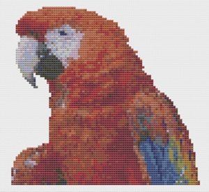 Macintosh HD:Users:Fiona:Documents:florashell:macaw:macaw.chart