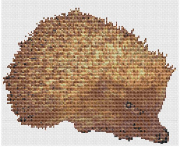 Pages from Hedgehog